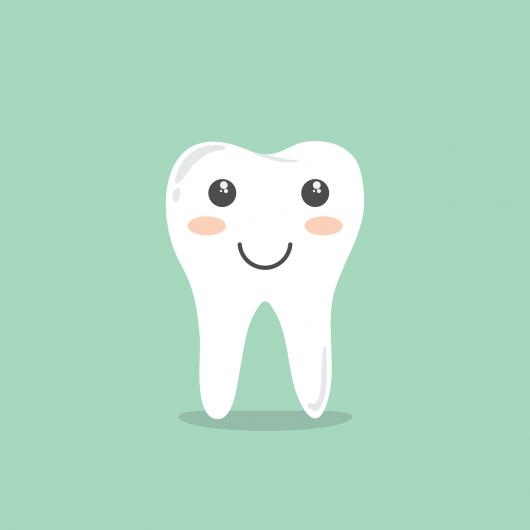 生後8ヶ月で歯は生えてこず